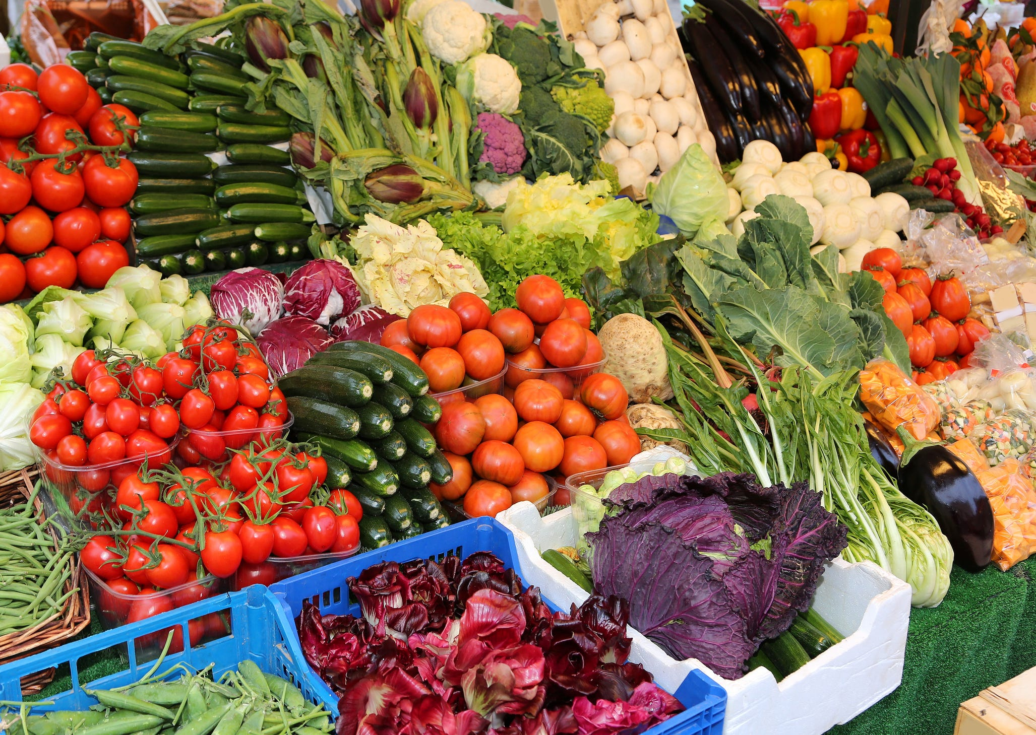Best Places to Find Fresh Organic Vegetables